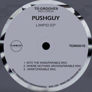EP: Pushguy - LIMPID