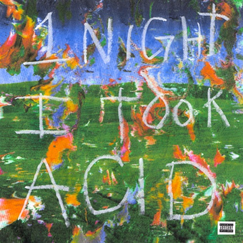 Album: BigBabyGucci - 1 Night I Took Acid