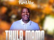 PureVibe ft Leon Lee - Thula Mama