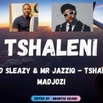 Mellow and Sleazy & Mr JazziQ ft Sho Madjozi - Tshaleni