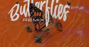 Queen Naija & Wale - Butterflies Pt. 2 Remix