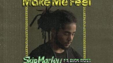 Photo of Skip Marley ft Rick Ross, Ari Lennox – Make Me Feel
