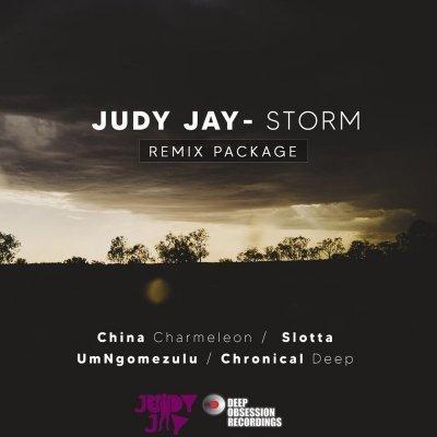 Judy Jay - Storm (China Charmeleon The Animal Mix)