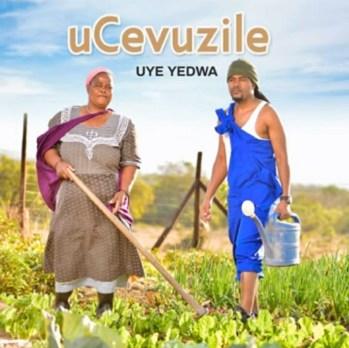 uCevuzile - Andisabaweli