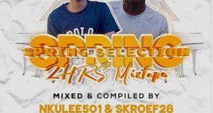Nkulee 501 & Skroef28 - Spring Selection Mix (Strictly Mdu aka TRP & Bongza)