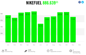 Nike_Fuel_ytd