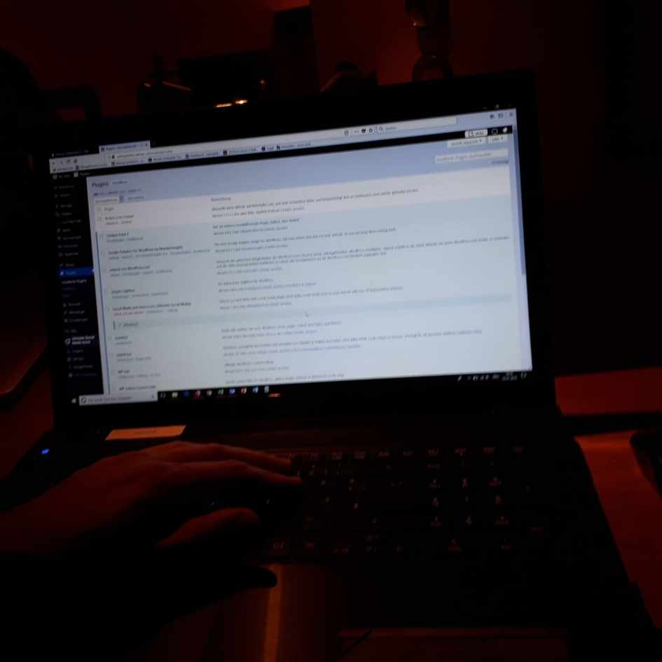 Blogpause