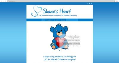 shanesheart.org