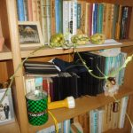 ハヤトウリ:種ウリの芽が伸び始める