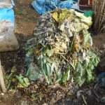 グリーン堆肥づくり:No.10堆肥の仕込み(3)