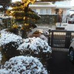 菜園日記:初雪