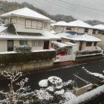 菜園日記:3回目の積雪