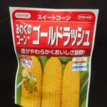 トウモロコシ(1):踏込み温床に播種