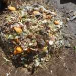 グリーン堆肥づくり:No.2堆肥の仕込み(2)