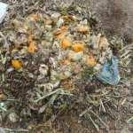 グリーン堆肥づくり:No.4堆肥の仕込み(1)