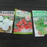 小カブ・赤カブ・チンゲンサイ:播種