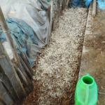 落葉堆肥づくり:3回目の仕込み