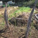 農業施設:割竹支柱ラックの更新