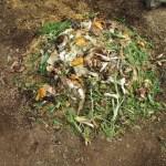 グリーン堆肥づくり:No.3G堆肥の仕込み(2)