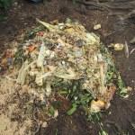 グリーン堆肥づくり:No.6G堆肥の仕込み(2)