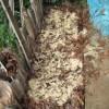 落葉堆肥づくり:2回目の仕込み