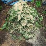グリーン堆肥づくり:No.9G堆肥の仕込み(1)