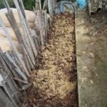 落葉堆肥づくり:4回目の仕込み