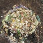 グリーン堆肥づくり:No.1G堆肥の仕込み(1)