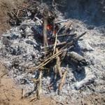 肥料づくり:草木灰づくり(4)