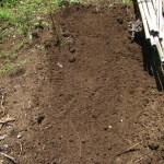 ハヤトウリ:畝づくり
