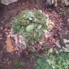 グリーン堆肥づくり:No.8G堆肥の仕込み(1)