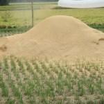農業資材:2021年度産籾殻の確保