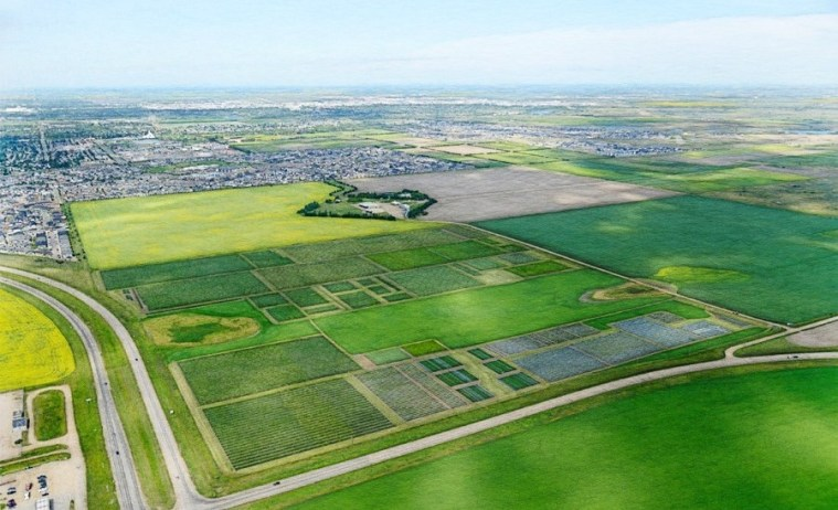 Crop Development Centre is making new patterns across agriculture