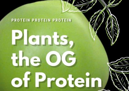 You're already eating a plant protein diet