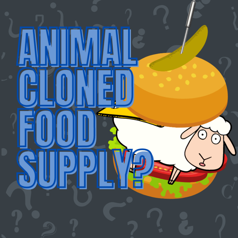 Cloned Food Supply?