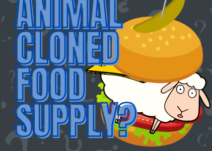 Should Products of Cloned Animals be in the Human Food Supply Chain?