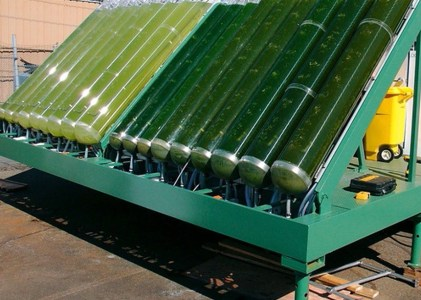 """Biofuel: A """"Green"""" Technology With Complex Implications"""