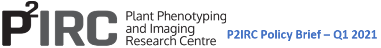 P2IRC Policy Brief Q1 2021 logo