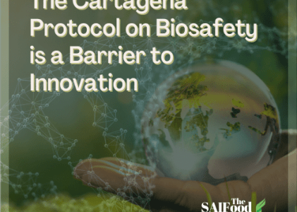 The Cartagena Protocol on Biosafety is a Barrier to Innovation