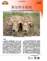 Chinese_Issue_11