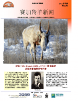 Chinese_Issue_12