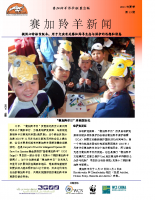 Chinese_Issue_13