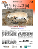 Chinese_Issue_17