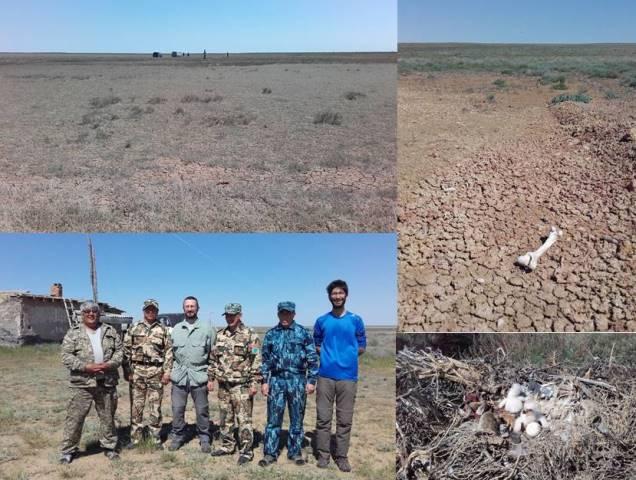 Blog From the Field in Kazakhstan