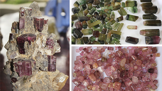 The rubellite crystals