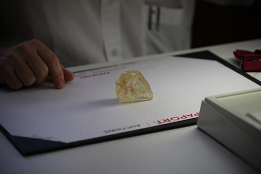Diamond Rapaport