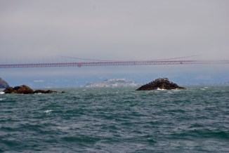 Golden Gate in sight!