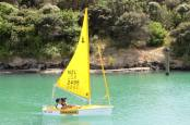 sailability 303
