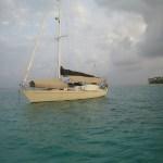 Sailing Amelia island