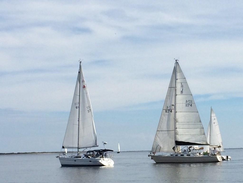 Sailboat racing Amelia Island
